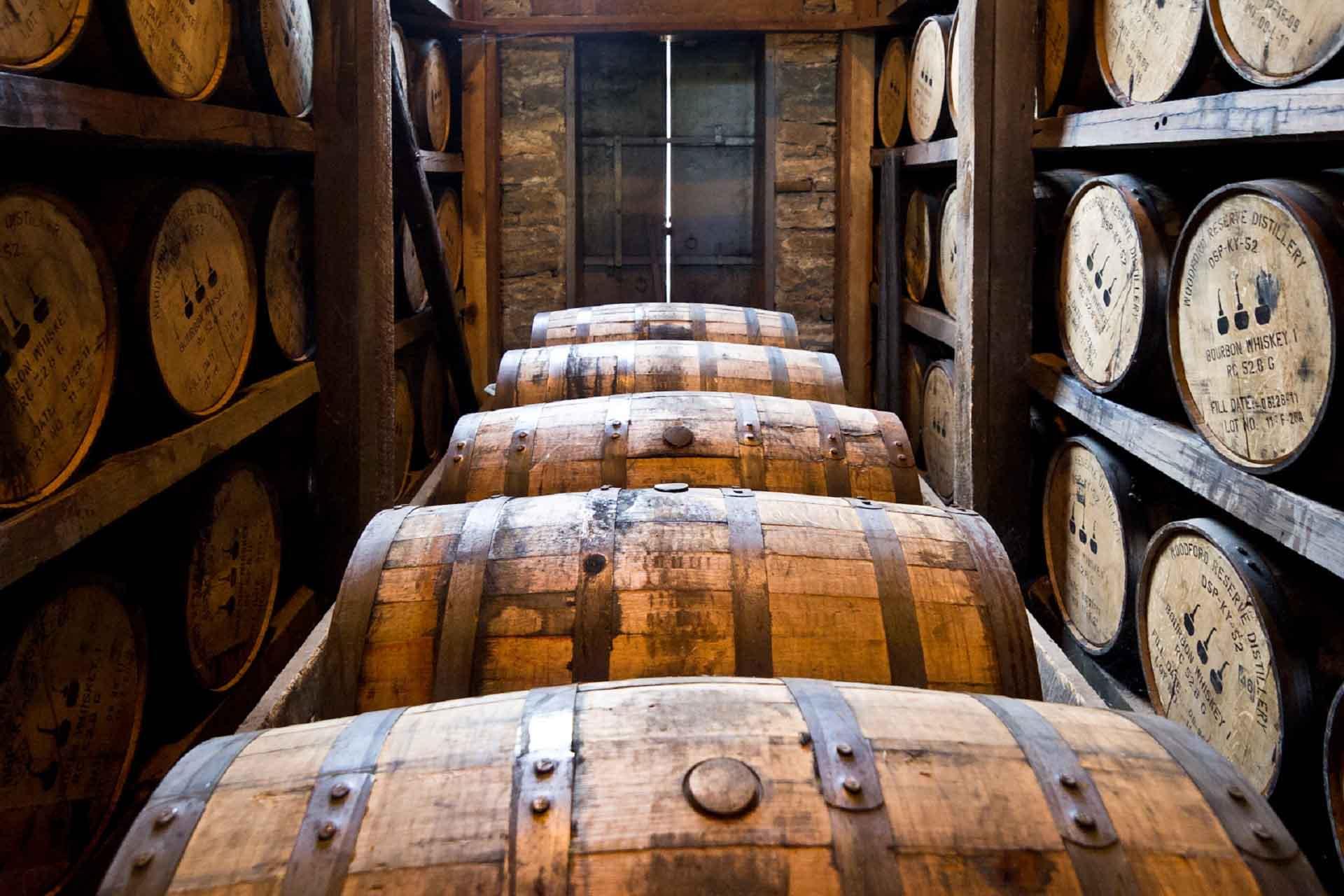 Bodega con barriles de madera