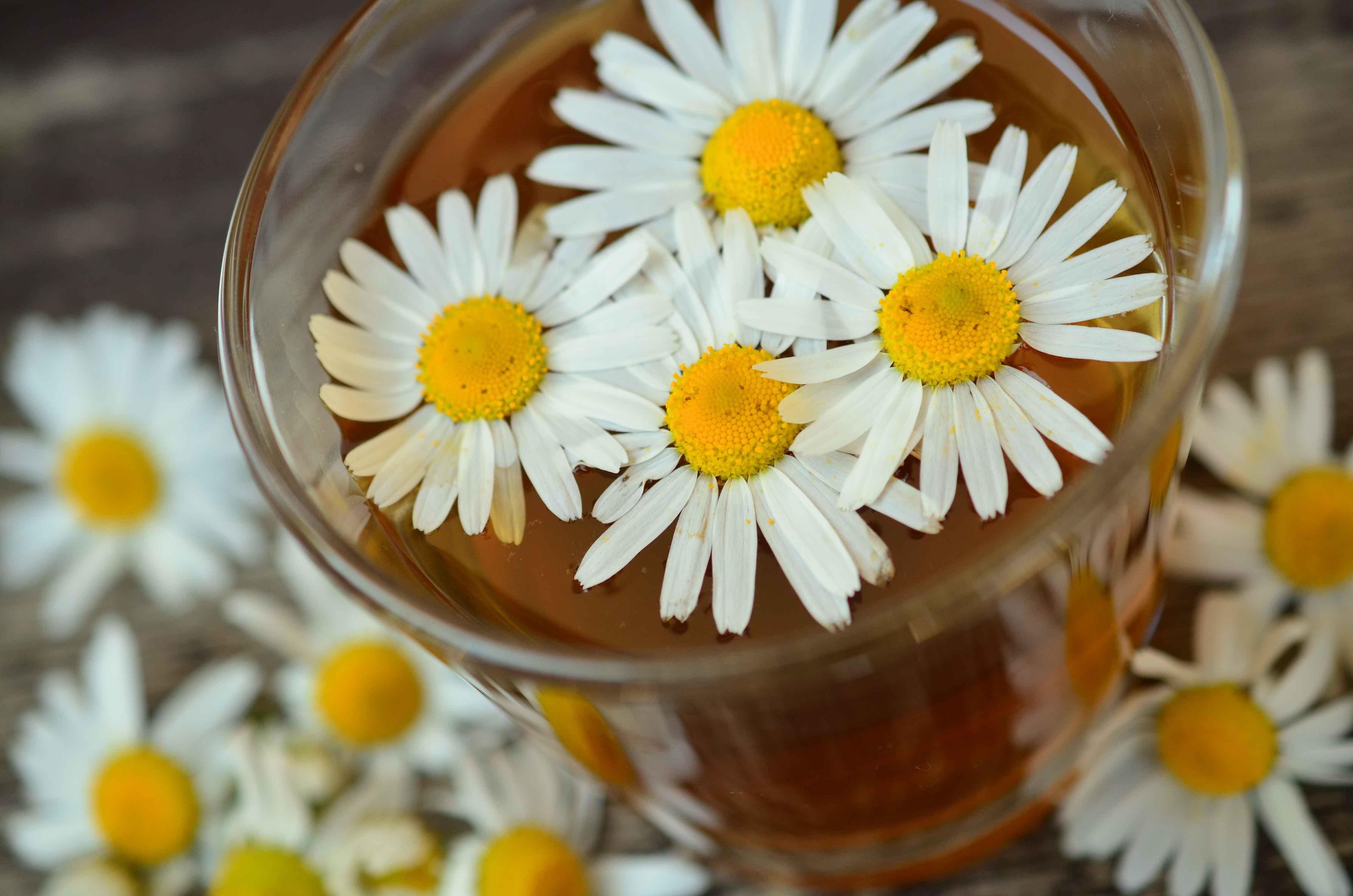 Agua de flores con margaritas encima